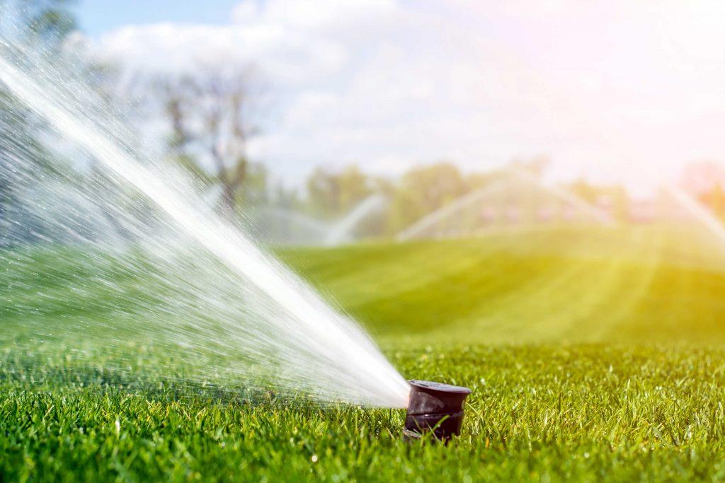 Irrigation Maintenance, Irrigation sprinkler head